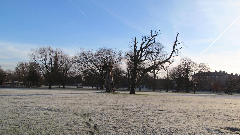 winterblog